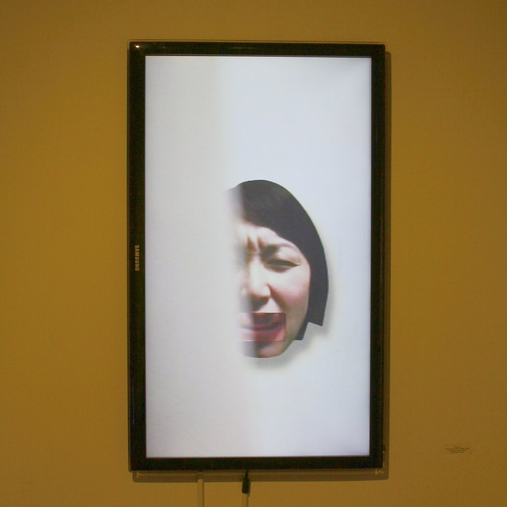 Faces_Installation View4
